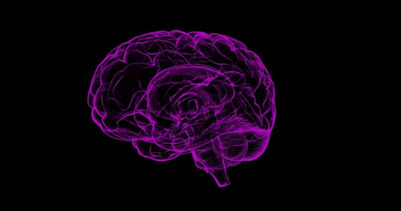 cerebro en fondo negro